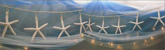 Starfish strings for hire for beach weddings, Auckland