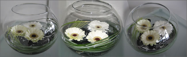Fishbowl centrepiece for hire, Auckland Centrepiece hire