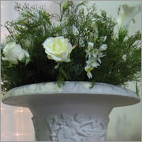 Floral arrangements for  hire for large pots and urns, Auckland