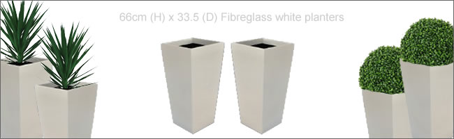 White fibreglass planters for hire, Centrepieces