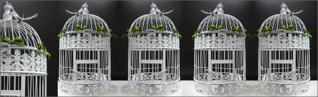 Birdcage hire for wedding centrepieces, Auckland