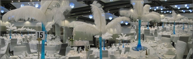 Hire ostrich feathers for wedding centrepieces, Auckland CBD